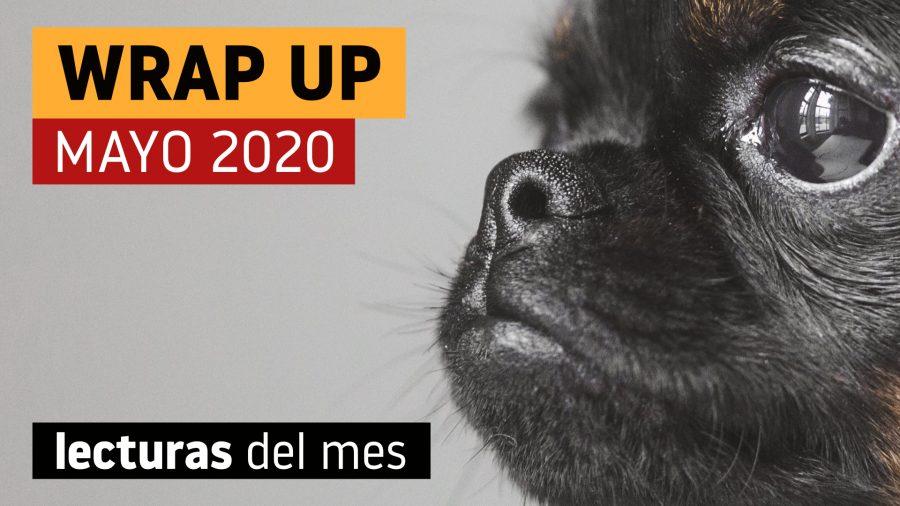 wrap up mayo 2020